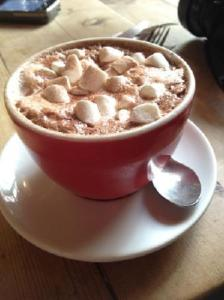 hot-chocolate-with-marshmallow